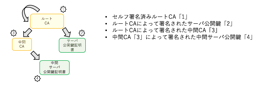 Ca 証明 書 中間